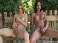 Two girls fuck each other with a dildo