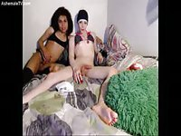 Amateur trannies playing naughty in cam